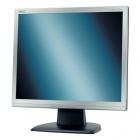 Monitor - NEC 19