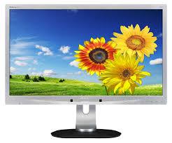 Monitor - Philips Brilliance 220P 22