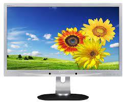 Monitor - Philips Brilliance 241P 24