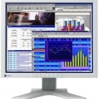 Monitor - Eizo L685 18.1